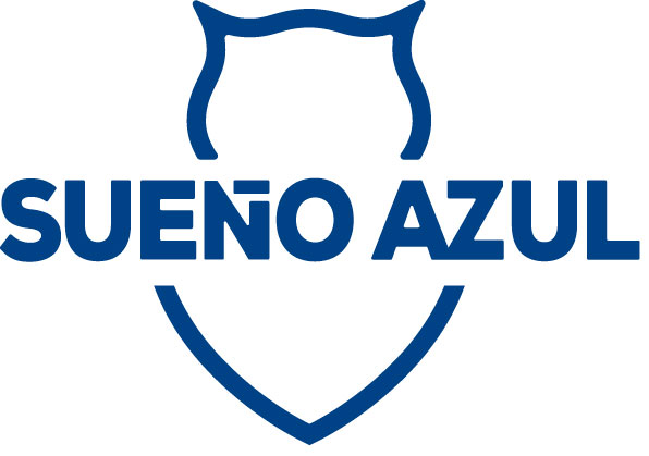 Sue o azul club universidad de chile for Piscina u de chile valores 2017